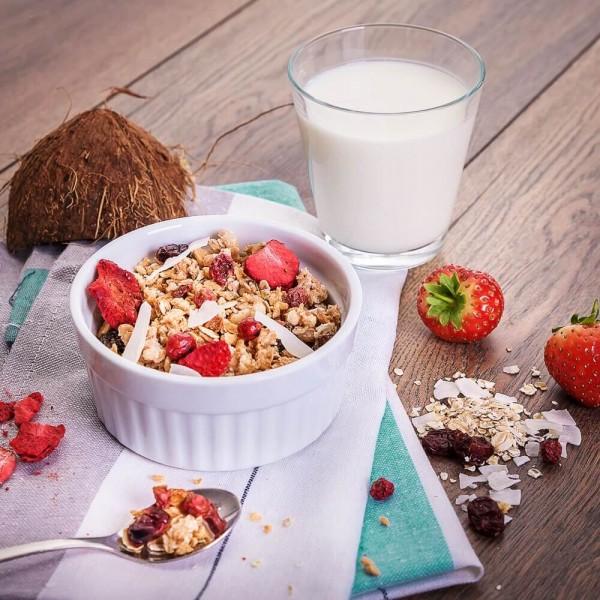 Fit4Day Protein Müsli Rote Früchte - 375 g Zipp-Beutel bei CardioZone günstig online kaufen