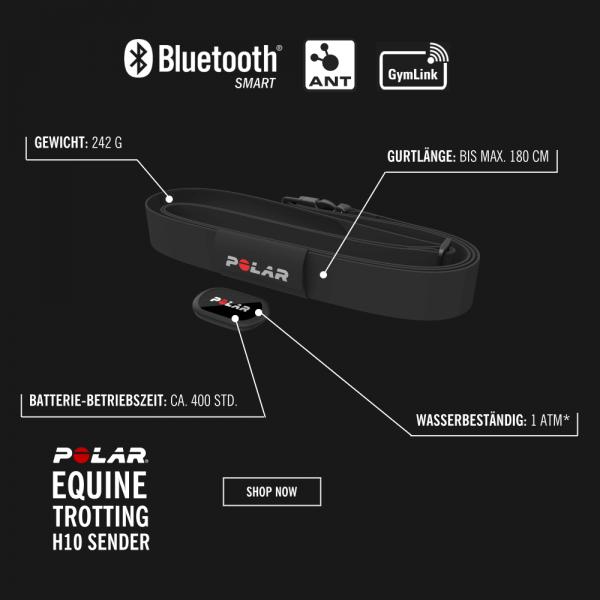 POLAR Equine H10 Bluetooth Smart Sender mit Softgurt für freies Pferde Training bei CardioZone guenstig bestellen