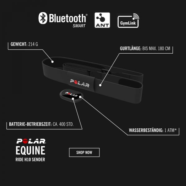 POLAR Equine H10 Bluetooth Smart Sender mit Sattel-Elektroden für Distanzreiten, Vielseitigkeit, Dressur- und Springreiten, Rennen bei CardioZone guenstig online kaufen